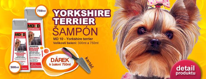 �amp�n Yorkshire Terrier
